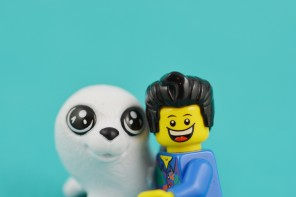 As cute as the photos may be, you seal-riously need to stop taking sealfies with the seals!