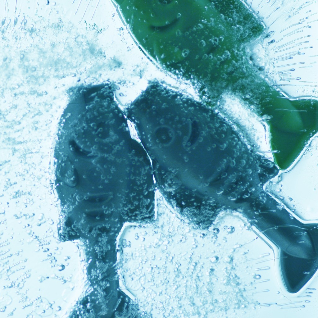 A skating rink in Japan froze fish beneath the surface of the ice to attract visitors, but will now remove them following public outrage.