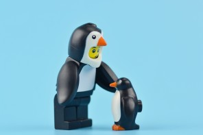 Scientists have discovered the fossil remains of a giant penguin that existed 55 to 60 million years ago, shortly after dinosaurs became extinct.