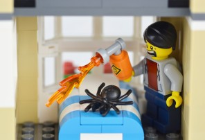 It's believed that a man may have set fire to his apartment while trying to kill a 'huge wolf spider' in a bedroom with a blowtorch.